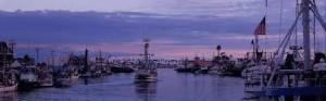 San Pedro Harbor Shot